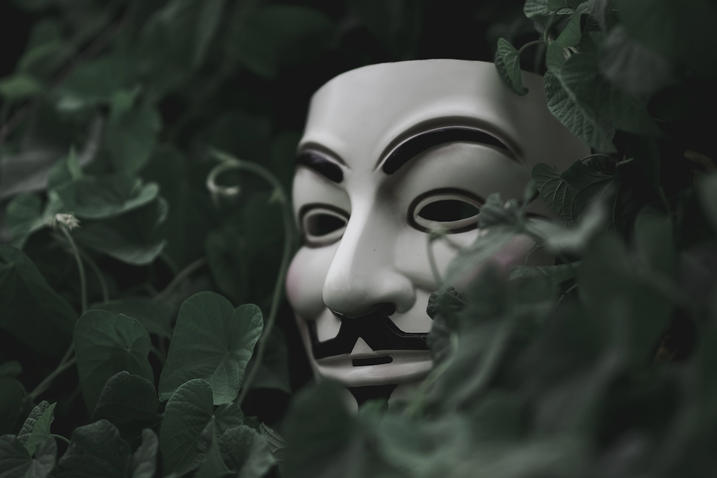 Guy Fawkes mask hiding in trees